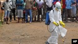 리비아에서 4일 한 보건인력이 에볼라에 감염돼 사망한 것으로 의심되는 사람의 시체에 약품을 뿌리고 있다.