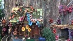 美國國家植物園仙境般慶祝節日