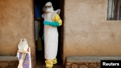 Ebola in the Democratic Republic of Congo