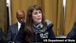 美国负责军备控制事务的助理国务卿波夫莱特(Yleem D.S. Poblete)