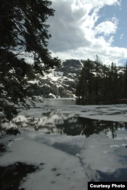 California is the world's sixth largest agricultural exporter and is dependent on snowpack for those crops. (California Dept. of Water Resources)