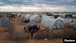 FILE - A general view shows the tented settlement near the Ifo 2 refugee camp in Dadaab, near the Kenya-Somalia border, Aug. 29, 2011.