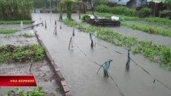 Tết buồn ở Lộc Hưng Sài Gòn