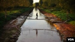Limbah beracun yang tumpah ke sungai Danube telah menewaskan 5 orang dan membuat lebih 100 orang cedera.