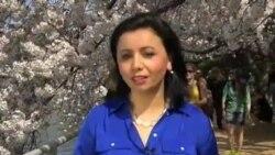 Markaziy Osiyo/O'zbekiston internetda/Sara Kendzior bilan suhbat