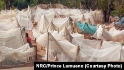 Des déplacés à Kalemie qui n'ont que des moustiquaires pour seul abri.