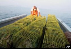 Paul Cabral lines up the lobster traps on the boat's deck.