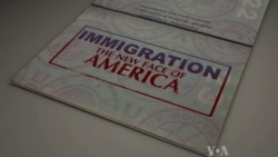 Immigration: The New Face of America