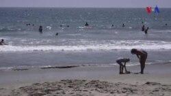 İqlim dəyişikliyi sahilyanı ərazilərə daha çox təsir göstərir