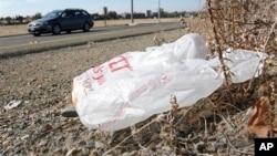 Plastic shopping bag litters roadside, Sacramento, Calif., Oct. 25, 2013.