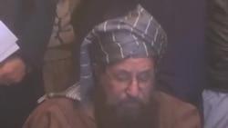 مولانا سمیع الحق، سربراہ جمعیت ِ علمائے اسلام (س)