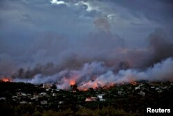 Lidah api melahap hutan di sekitar kota Rafina, dekat Athena, Yunani, 23 Juli 2018.