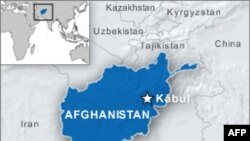 卡尔扎伊访前塔利班重镇马尔贾