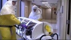 Ebola Tedavisinde Yeni Yöntemler