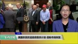 VOA连线(莫雨):美国农民欢迎政府救农计划,但盼市场恢复