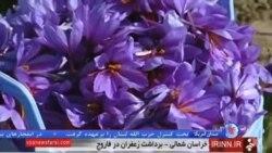 نیم نگاه ایران به صادرات زعفران و خاویار پس از لغو تحریم ها