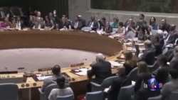 俄罗斯否决联合国有关马航飞机坠毁事件决议