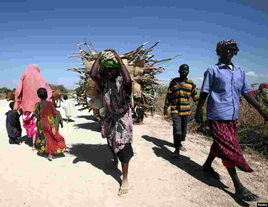A woman carries bundles of firewood on her back to be delivered for use as fuel for cooking for people displaced as a result of flooding in areas around the town of Jowhar, north of Somalia's capital Mogadishu, Dec. 10, 2013.