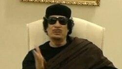 جایزه برای دستگیری معمر قذافی
