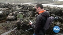Study: Storm Waves Capable of Moving Car-Sized Boulders Threaten Coastal Communities