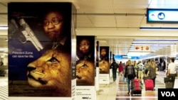 Ads opposing the lion bone trade posted at Johannesburg airport. (Avaaz)