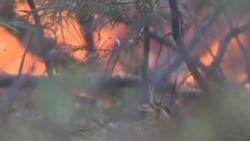 消防队员继续同加州山火搏斗 军用无人机助战