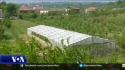 Mbështetje për krijimin e fermave të agroturizmit