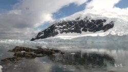 Greenpeace: Microplastic, Chemical Pollution Widespread in Antarctica