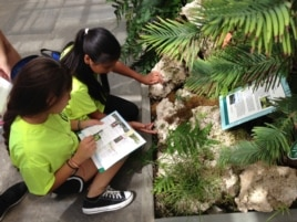Junior Botanists at work at the U.S. Botanic Garden in Washington, Aug. 15, 2014. (Photo: J. Taboh / VOA)