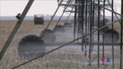Nông dân Kansas nỗ lực bảo tồn nguồn nước ngầm tưới tiêu