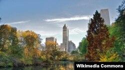 Dengan perencanaan tata kota yang lebih baik, termasuk penyediaan taman-taman kota seperti halnya taman 'Central Park' di kota New York ini, akan membuat warga kota lebih sehat dan merasa nyaman (foto: dok).