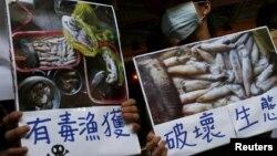 Người dân ở Đài Loan biểu tình đòi tập đoàn Formosa phải điều tra và minh bạch thông tin về vụ ô nhiễm biển ở miền Trung Việt Nam vào ngày 17/6/2016.