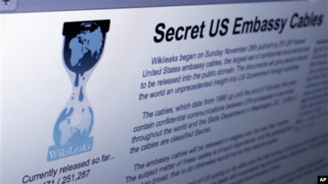 The Internet homepage of Wikileaks (file photo – 01 Dec 2010)