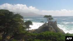 Lənkəran və Kaliforniyanın Monterey şəhəri qardaşlaşdı