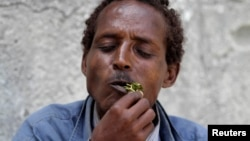 Somalia's ban on flights importing the popular narcotic khat from Kenya appears to be holding up in the capital, Mogadishu, although a region to the north is defying the ban.
