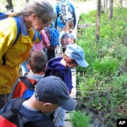 Teacher Laura Peterson and her students examine a stream during Hike Day.