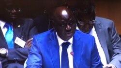 Não há dois primeiros-ministros na Guiné-Bissau, analista Luís Vaz Martins