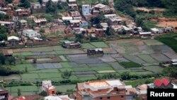 Des champs de riz paddy au milieu des maisons d'habitation à Antananarivo, Madagascar, 19 décembre 2013. REUTERS / Thomas Mukoya