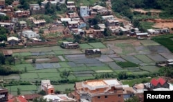 FILE - A general view shows rice paddy fields within residential houses in Madagascar's capital Antananarivo.