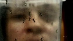With Each New Discovery, Zika Virus Becomes More Frightening