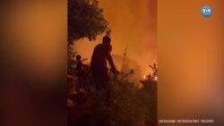 Manavgat Yangını Hala Kontrol Altına Alınamadı