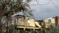 白宮派軍隊和政府工作人員赴波多黎各救災
