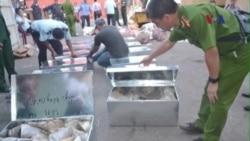 Việt Nam bắt giữ gần 1 tấn sừng tê giác và ngà voi