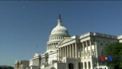 Підсумки проміжних виборів у США. Відео
