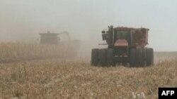 SHBA: Skadon ligji për subvencionimin e prodhimit të etanolit
