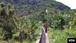 Sistem pengairan persawahan di salah satu Subak di Bali (foto: Muliarta).