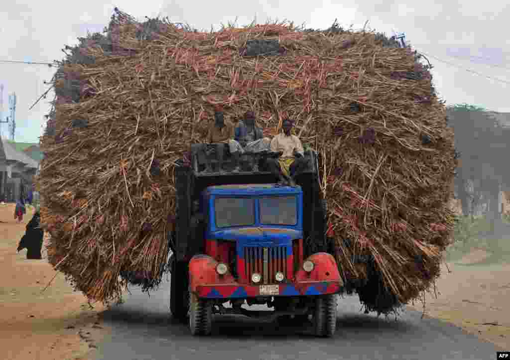 People sit on the top of a truck heavily piled with corn-stalks plies as they head for Mogadishu from Afgooye.