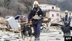 Nhà hảo tâm ẩn danh tặng 130.000 cho nạn nhân động đất Nhật Bản