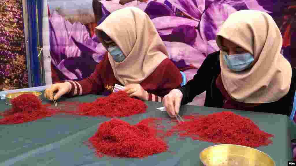 د هرات محلي مقامات وایي د کرهڼې د متخصصینو د سروی او اټکل له مخې سږکال پدې ولایت کې څه دپاسه ١٢ ټنه زعفران تولیدیږي