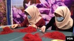 په روان ۱۳۹۷ لمریز کال کې افغانستان کې ۱۶ ټنه زعفران تولید شوی وو.